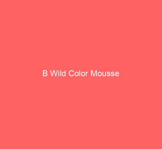 B Wild Color Mousse