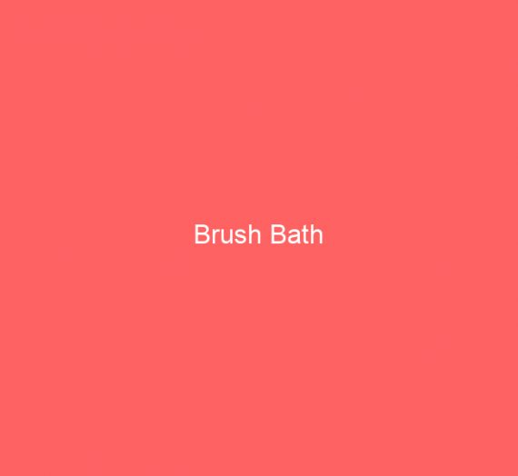 Brush Bath