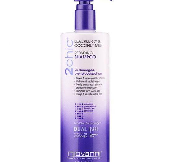 2Chic Blackberry & Coconut Milk Ultra-Repair Shampoo