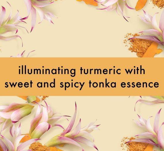Turmeric & Tonka Essence Body Wash