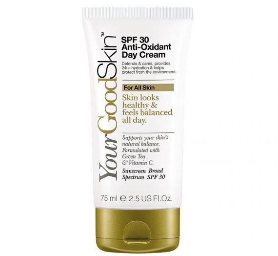 Spf 30 Anti-Oxidant Day Cream