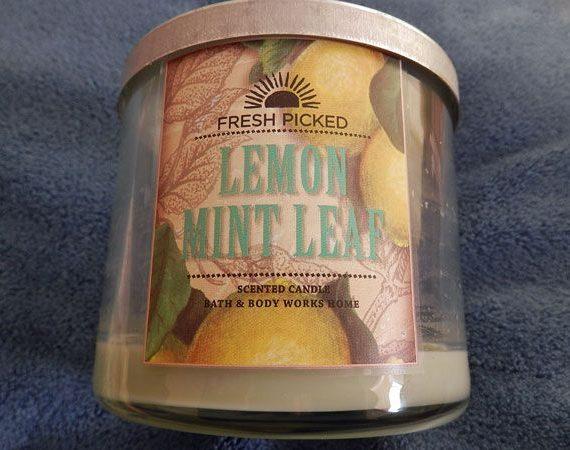 Lemon Mint Leaf