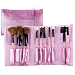 Perfect Ten Brush Set